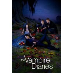 Crónicas vampíricas (temporada 1-8) (Serie completa) - DVD