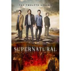 Sobrenatural (12ª temporada) - BD