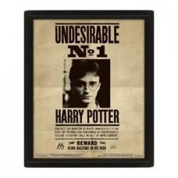 Cuadro 3D Harry Potter Sirius