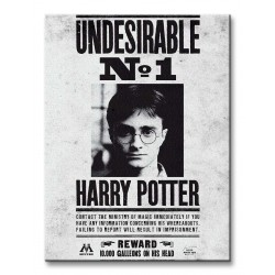 Lienzo Harry Potter Undesirable N.1 (30x40cm)