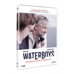 Waterboys - DVD