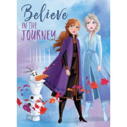 Lienzo Frozen 2 30x40 Believe Journey