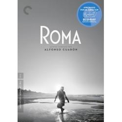 Roma (BD + Libro 180 páginas) - BD
