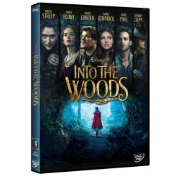 INTO THE WOODS DISNEY - DVD